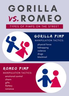 gorilla-vs-romeo